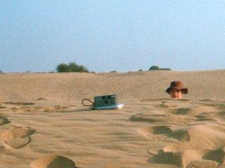 desert-devonhead.jpg